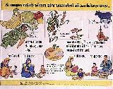 gujarati-15